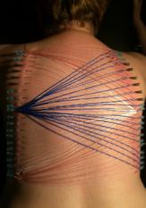 Nadeln im BDSM Kontext auf dem Rücken